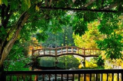 Hatley Gardens_bridges